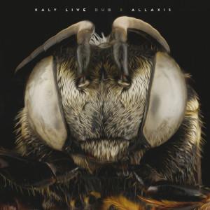 kaly-live-dub 5