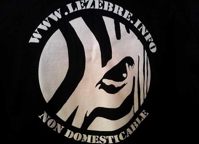 présentation de l'équipe de rédaction du journal lezebre.info