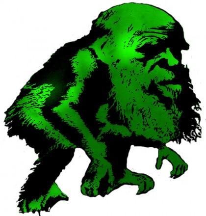 vert darwin