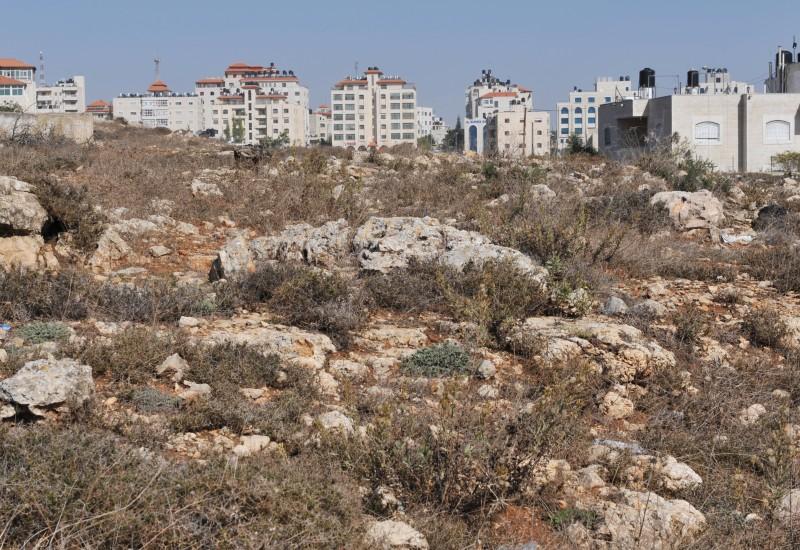 8_Ramallah_2010